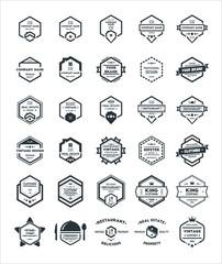 30 Set of Hexagon Vintage Hipster Badge Logo Design Template Vector Symbol