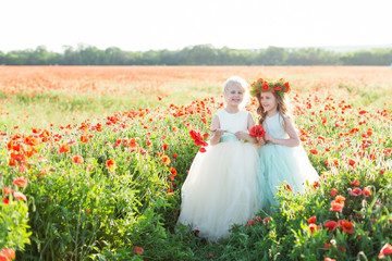 little girl model, childhood, happiness, fashion, summer concept - two little princesses dressed in white and blue elegant clothes with bouquets of poppies, they are smiling in sunny field of flowers