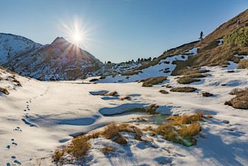 idyllic sunny winter landscape in the alps with animal traces