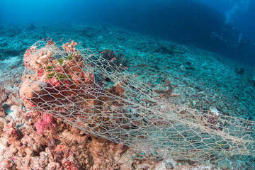 An abandoned ghost net wrapped around coral on a tropical reef