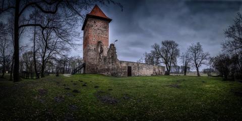 Photo sur Plexiglas Ruine The ruins of a medieval castle.