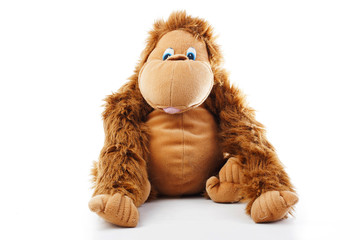 Monkey plush toy in studio. brown monkey,cute monkey,fake monkey,plush monkey,toy monkey,chimpanzee,jocko,gorilla,anthropoid,hominids,monkey toy,monkey plush,monkey with white background.