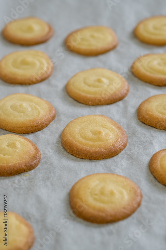 Close Up Homemade White Chocolate Cat S Tongue Cookies Selective Focus