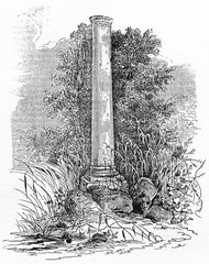 Ancient stone column surrounded by vegetation and weeds, funerary monument of Daubenton in Jardin des Plantes Paris. Old Illustration by Chevalier published on Magasin Pittoresque Paris 1834