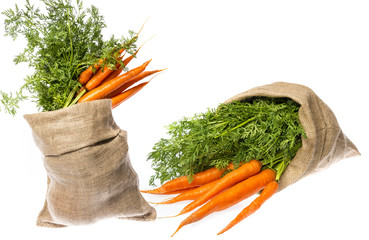 a fresh carrot in a cask isolated on white background