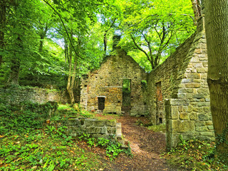 Abandoned, overgrown water mill made of sandstone, in Derbyshire, England