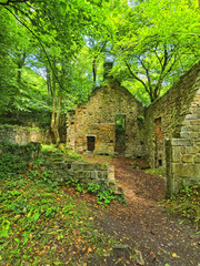 Abandoned sandstone water mill in woodland in Derbyshire, England