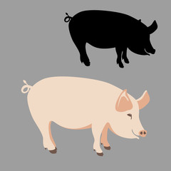 pig flat style vector illustration black silhouette profile
