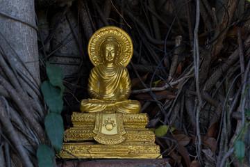 golden Buddha  in Thai temple