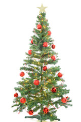 Beautiful large christmas tree with red balls and lights isolated on white background.