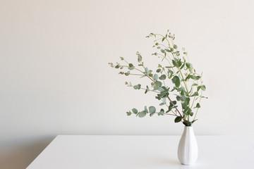 Eucalyptus leaves in small white vase on table against neutral background