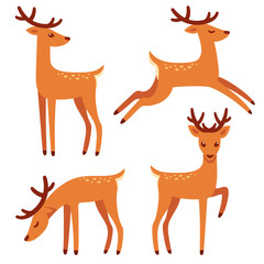 Cartoon deer set