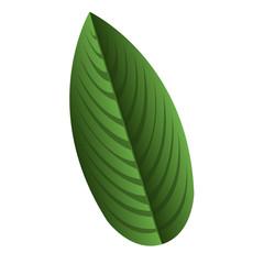 Isolated leaf icon