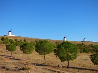 Molinos de viento en Herencia, pueblo de Ciudad Real en Castilla la Mancha, España