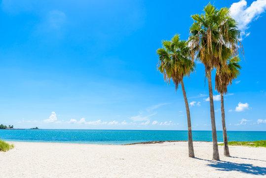 Sombrero Beach with palm trees on the Florida Keys, Marathon, Florida, USA. Tropical and paradise destination for vacation.
