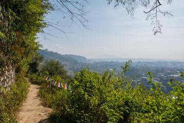 Wanderweg in Nepal mit Büschen am Rand und Blick in das Kathmandu Tal