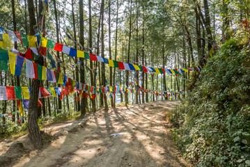 Wald in Nepal mit Gebetsfahnen