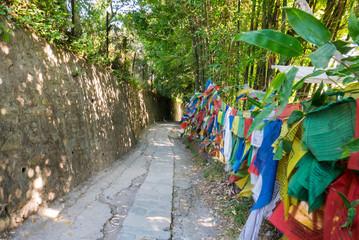 Wanderweg mit Gebetsfahnen in Nepal