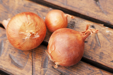 whole onion on wooden background