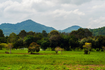 Landscape with green forest mountains in Thailand