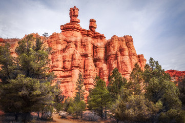 Interesting Rock Formations at Red Canyon, Dixie National Forest, Utah, USA