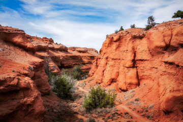 The Trail through Kodachrome Basin State Park, Utah, United States