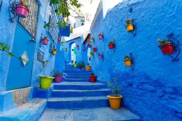 Famous Blue City Chefchauen at Morocco. Colorful flowerpots on the blue wall of old building. Travel destination concept.