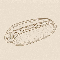 Hot dog. Hand drawn sketch on beige background