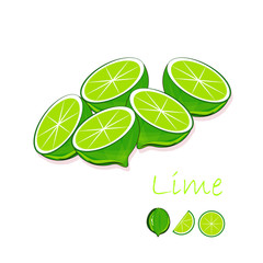 Green lime, slices on white background, hand drawing painting. Healthy eating, fruit, organic, for packaging design, for product packaging, for product label, for menu