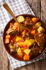 Spicy stew estofado with beef and vegetables in a bowl close-up. Vertical top view