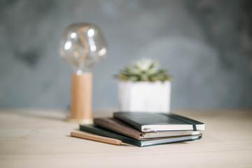 Bücher und Kugelschreiber mit Lampe und Pflanze im Hintergrund