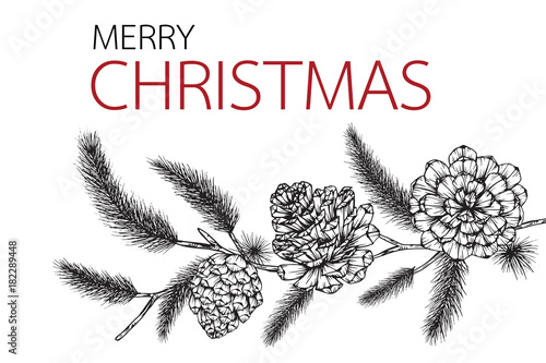Christmas Day Drawing Images.Flower Frame Drawing Illustration For Merry Christmas Day