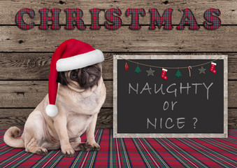 cute Christmas  pug puppy dog with santa hat and blackboard with text naughty or nice, on wooden background