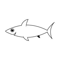 Cute shark line icon. Aquatic animal element icon. Premium quality graphic design. Signs, outline symbols collection icon for websites, web design, mobile app, info graphics