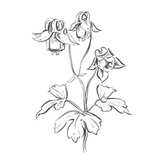 black and white floral ornament with flowers and leaves. Hand drawn ornament. Vector eps 8