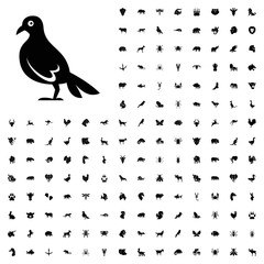 Dove icon illustration. animals icon set for web and mobile.