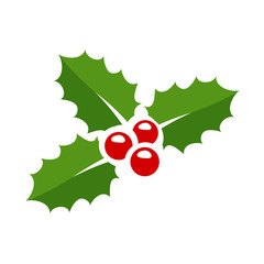 Holly berry leaves Christmas icon. Vector illustration