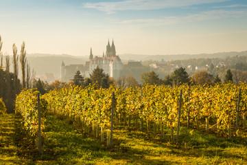Stadtansicht Meißen im Herbst zur Weinlesezeit