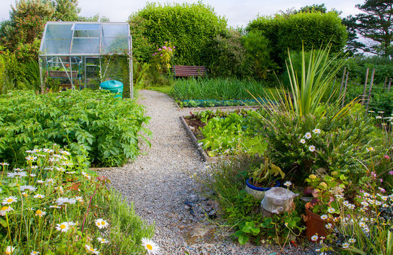 Garden Allotment with Glass House