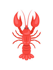 Red Crayfish Vector Illustration Isolated on White