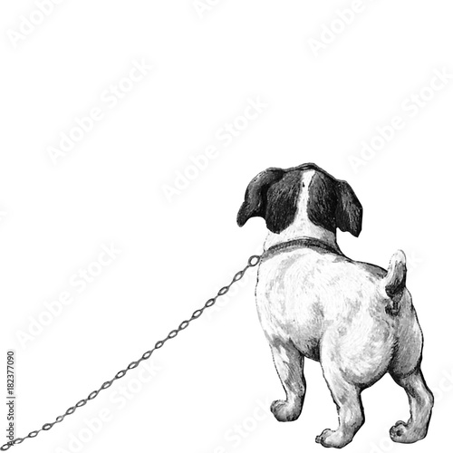 jack russel kleiner hund welpe h ndchen lithographie vektor schwarz wei dog. Black Bedroom Furniture Sets. Home Design Ideas