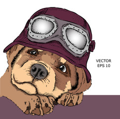 Portrait of a dog with steampunk helmet. Vector illustration. Abstract Background with Watercolor Stains