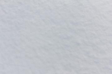 Snow White texture close-up
