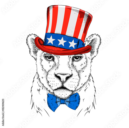 A Smiling Leopard In Old American Hat With A Flag National Symbols