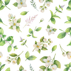 Watercolor vector seamless pattern of flowers and branches Jasmine isolated on a white background.