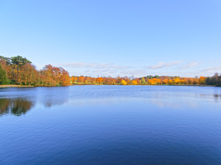 A clear autumn day, blue sky reflected in the lake, trees dressed in autumn colours on the banks