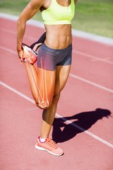 Low section of female athlete stretching leg on track