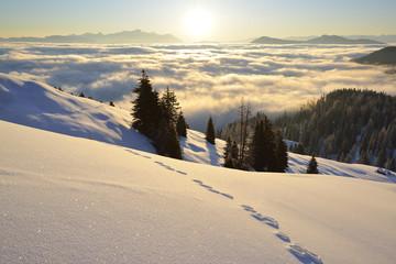 Rabbit tracks over snowface with Dachstein range and Lower Tauern range in the background, near Arthurhaus, Hochkoenig, Berchtesgaden range, Salzburg, Austria