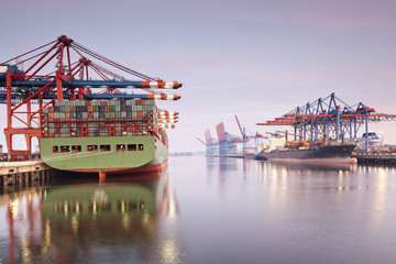 Container ships and cranes at Elbe river in Port of Hamburg, Germany