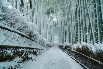 Poster de jardin Kyoto 京都嵐山竹林の雪景色
